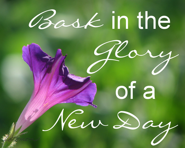 09/02/14 - Bask in the Glory of a New Day