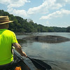 07/17/14 - Cape Fear River Canoe Trip