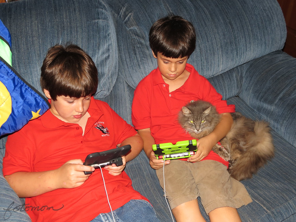 Nintendo 3ds Games For Boys The Boys Are Playing Their Nintendo 3ds Games