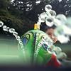 07/27/15 - Peek-A-Boo Splash