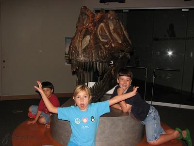 NC Natural Sciences Museum